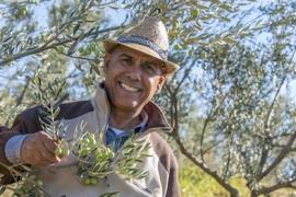 Oliven ernten – und das Öl nach Hause nehmen - 2018